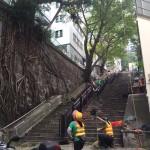 Shing Wong Street